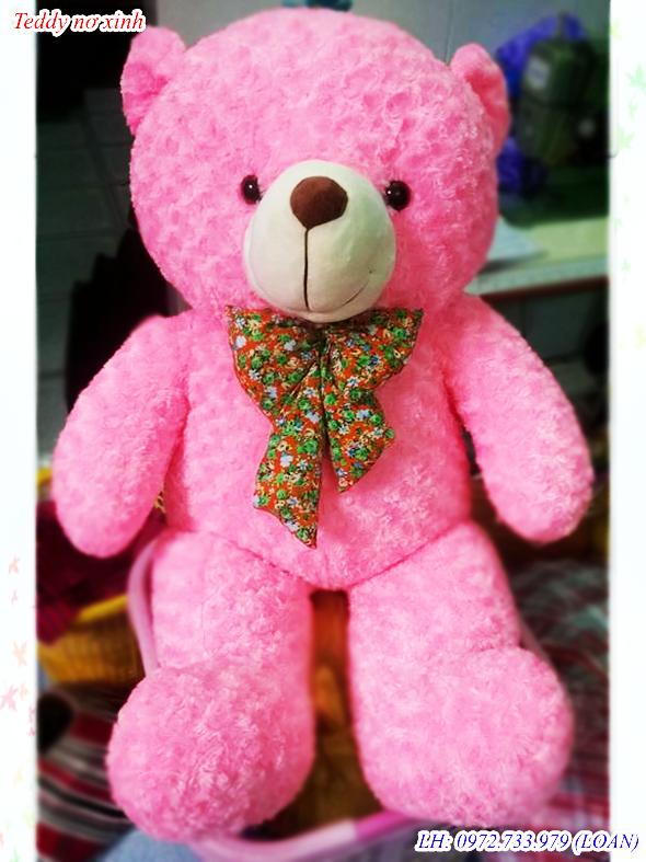 Teddy nơ