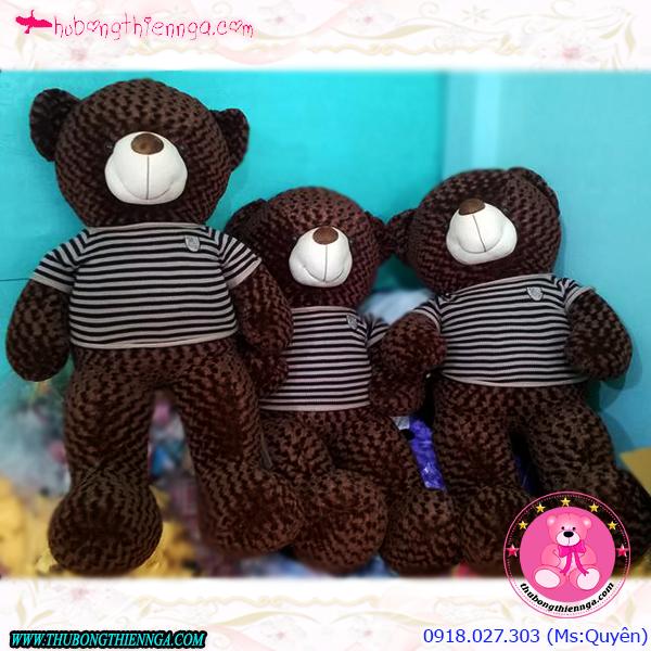 Gấu bông Teddy 1,8m