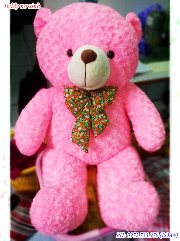 teddy hong 1